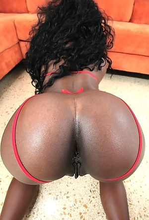 Black Pussy Porn Pictures